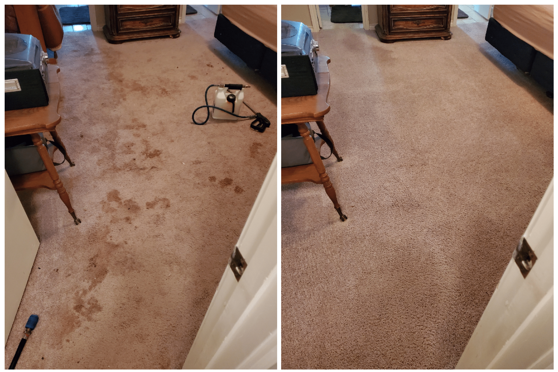 Carpet cleaning blood removal in Dallas, TX