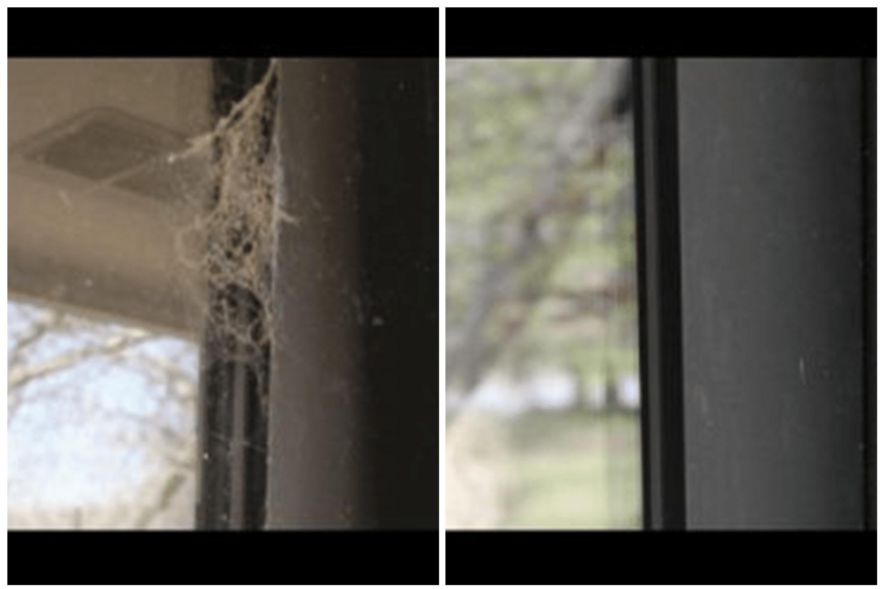 Cobweb Removal Dallas, TX